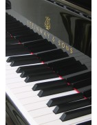Category: chamber music with piano